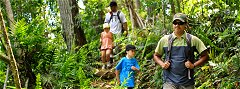 Trekking fun in Tanjung Resang