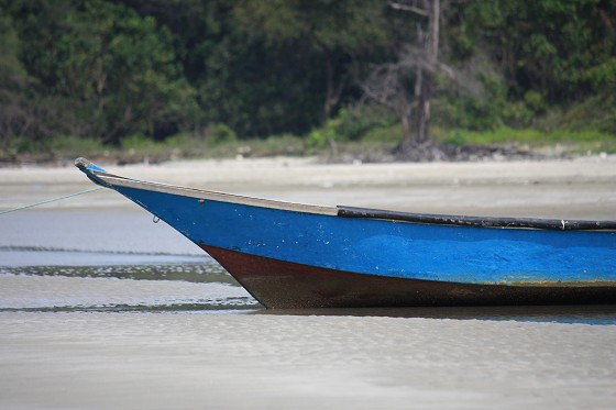 A fisherman's sampan patiently awaits its next foray