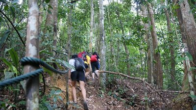 SMUX Trekkies making short shrift of Gunung Arong